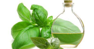 Aceite aromatizado de albahaca