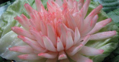 La decoración de platos. Crisantemo de cebollas